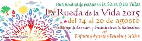 Rueda Vida 2015 banner