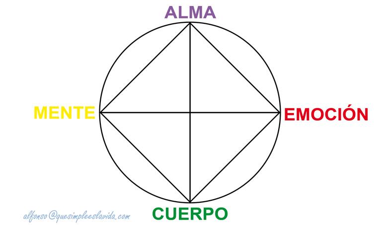 rueda tetraedro AEMC